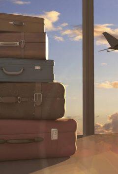 bagagem-de-aviao